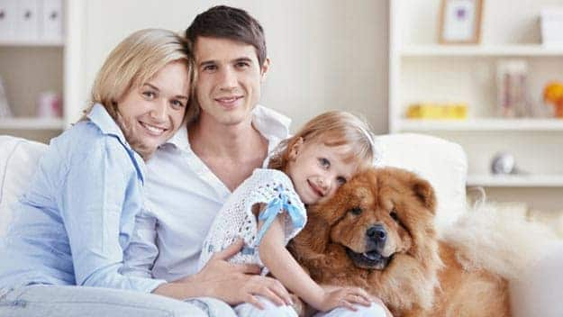 Wills & Trusts dog-young-family Direct Wills Upper Walthamstow